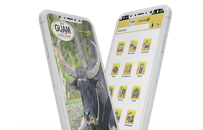Phones with Guam Phone Book
